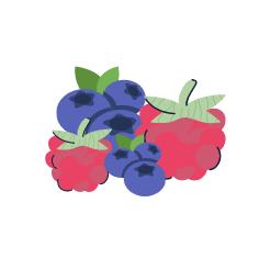 Logo yaourts aux fruits